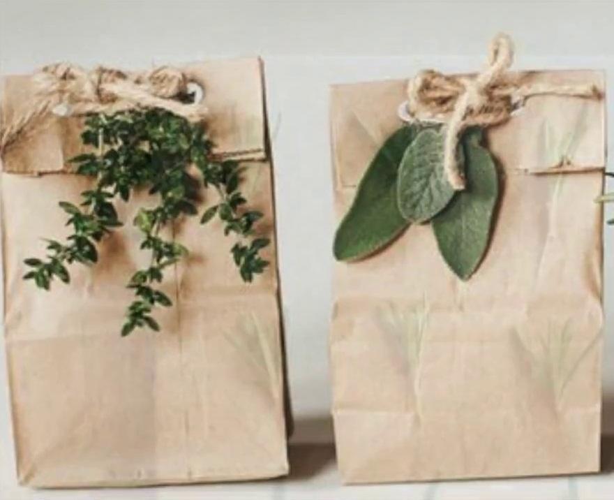 regalos empresariales ecologicos bogota